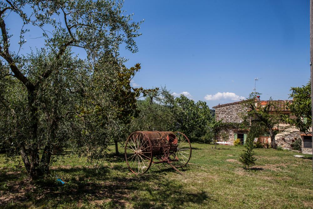 Tractor 1950 en uso en la Toscana