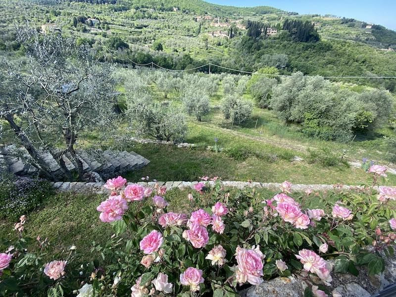 gîtes ruraux en toscane